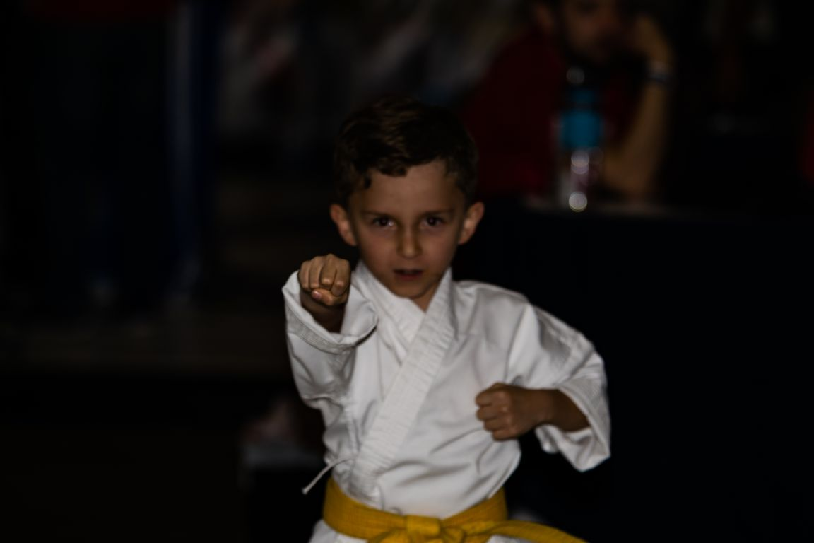 Phillip Karate Fist Color-8